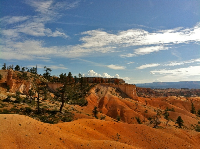 pines, hoodoos, and blue sky